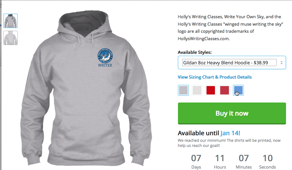 Small logo unisex hoodie, multiple colors. CLICK IMAGE FOR SHOP