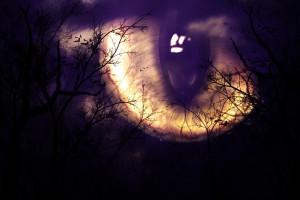 Scary Monster's Eye