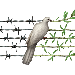 Conflict Dove